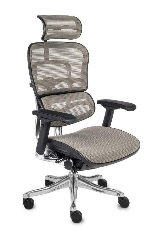 Fotel Biurowy Obrotowy Ergohuman Plus BS KMD 30