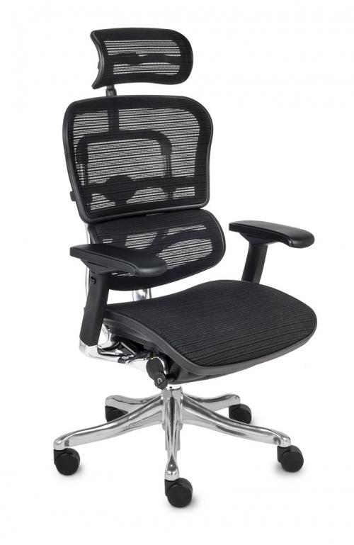 Fotel Biurowy Obrotowy Ergohuman Plus BS KMD 31