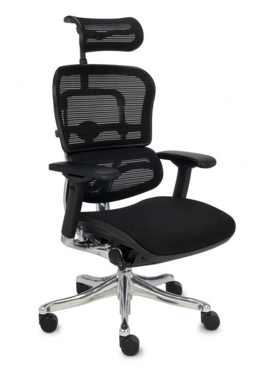 Fotel Biurowy Obrotowy Ergohuman Plus BT KMD 31