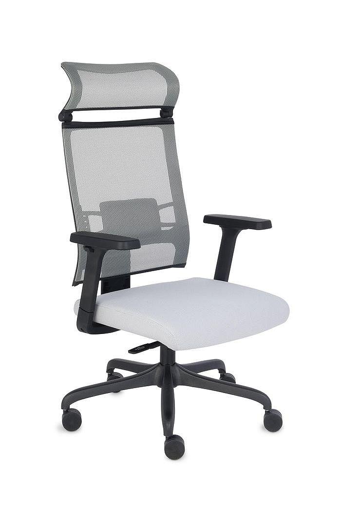 Fotel Biurowy obrotowy ERGOFIX TM06 szary